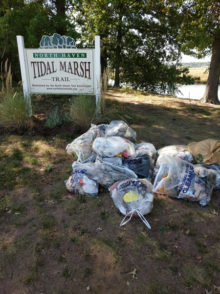 Trash at Tidal Marsh Trail